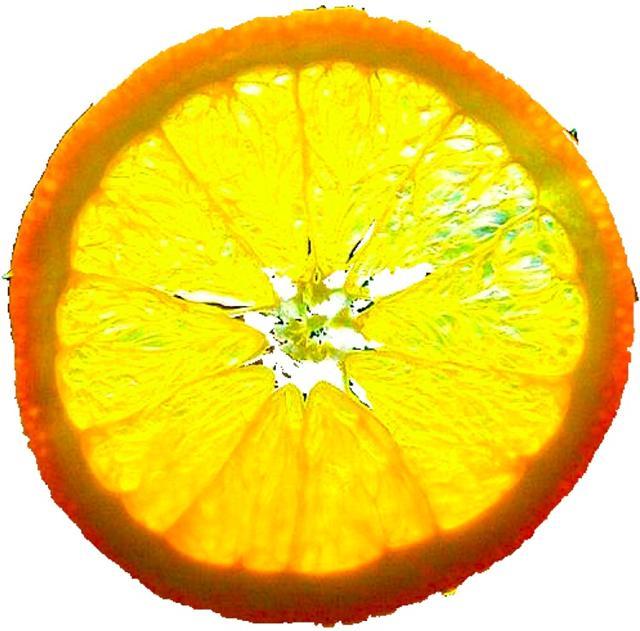 orange4small.jpg