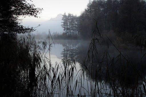 Brume sur l'étang dans Matheysine melo-11-2012-84