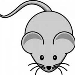 Quand la montagne accouche d'une souris dans PERSO souris2