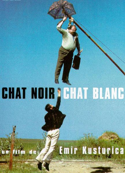 TRIÈVES EN SCÈNE FAIT SA RENTRÉE ! dans Trièves culture & cinéma 17-chat-noir-chat-blanc
